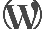 Developer de WordPress – Noruega