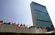 ONU - Programa Jovens Profissionais 2013 para portugueses