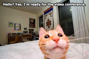 Video Conferencia - Australia