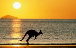 Vistos para a Austrália: conheça as opções disponíveis